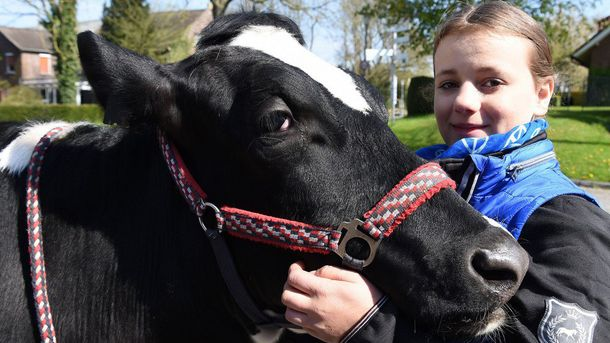 Ханна и ее корова Луна