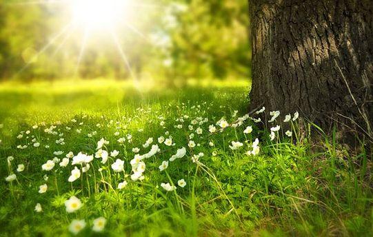 Прогноз погоди на 4 травня: тепло із весняними грозами