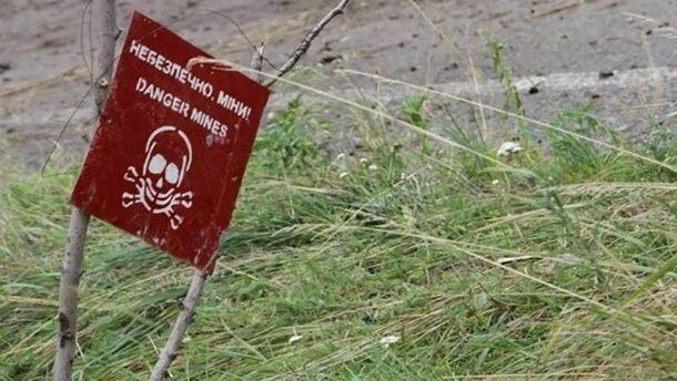 Торік на мінах в Україні підірвалася 101 людина