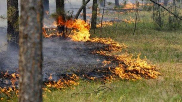 Чрезвычайная пожарная опасность в 4 областях