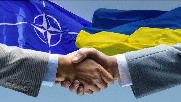 Сейчас Украина не будет подавать заявку на членство в НАТО