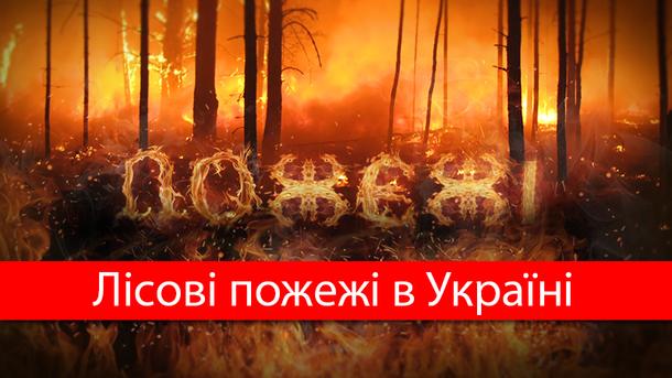 Лесные пожары в Украине: последствия 2016 года