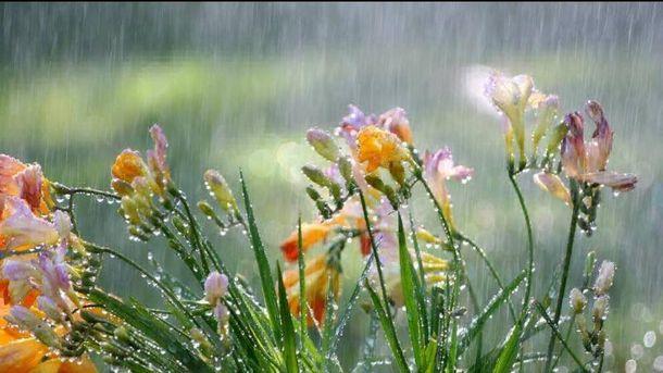 31 мая в Украине пройдут дожди с грозами