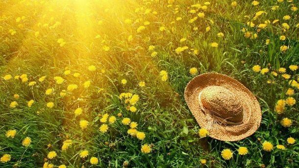 Прогноз погоди на 2 червня в Україні