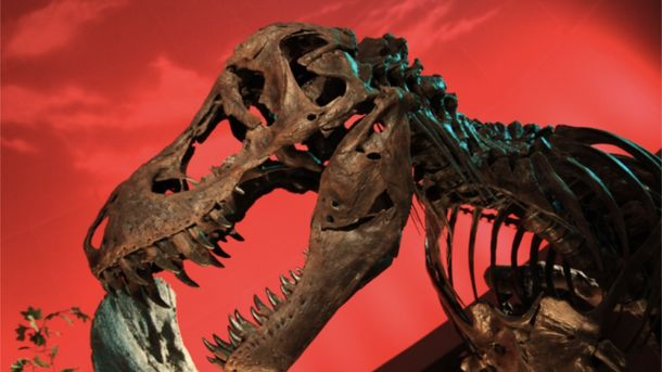 Вчені розповіли, чи можливо воскресити динозаврів