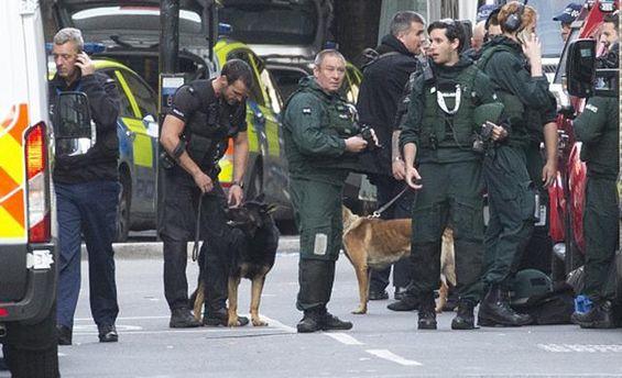 Жертвами терактов встолице Англии стали поменьшей мере 7 человек
