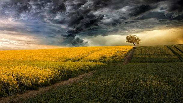 Погода 10 июня: Киев – без осадков, запад и восток – грозы