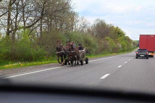 Подвода с лошадьми на дороге