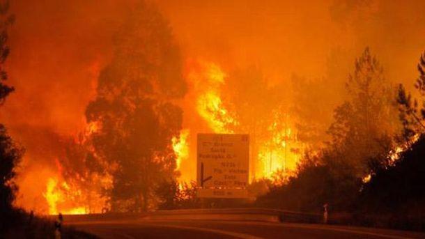 Масштабні пожежі у Португалії вже забрали 25 життів