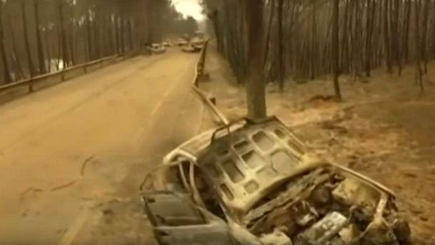 Последствия пожара в Португалии