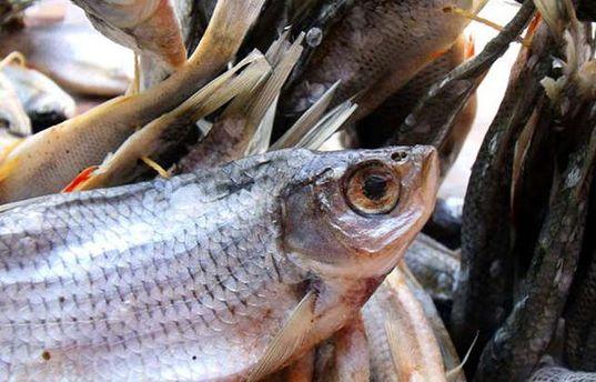 ВКиєві чоловік захворів наботулізм після вживання в'яленої риби
