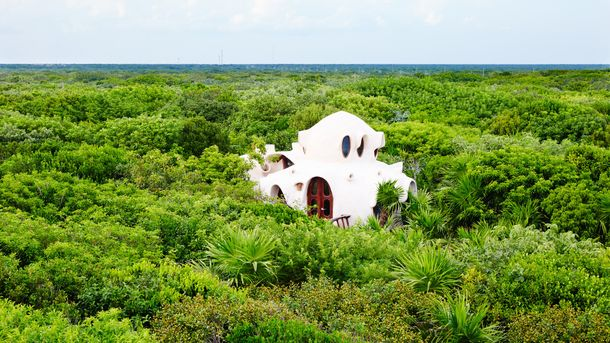 Отель на дереве в Мексике