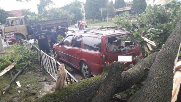 Сильна буря сколихнула Львів: з'явились фото наслідків