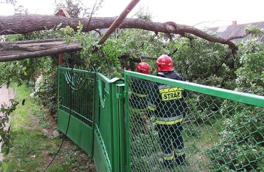 Негода в Україні: загинула людина, населені пункти знеструмлені