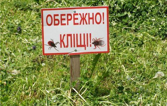 Укусы клещей положили в больницы ряд людей на Харьковщине