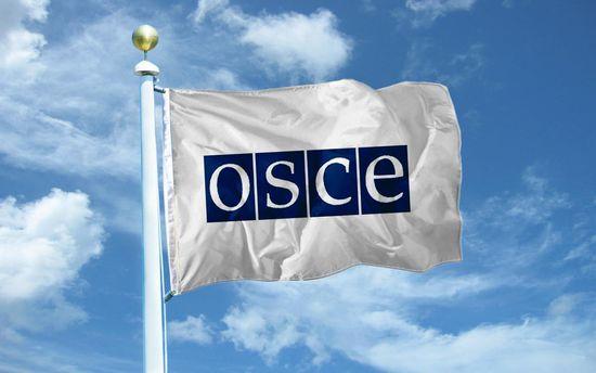 ОБСЄ визнали російську окупацію Криму