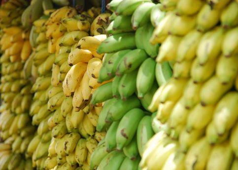 Вчені винайшли новий сорт бананів