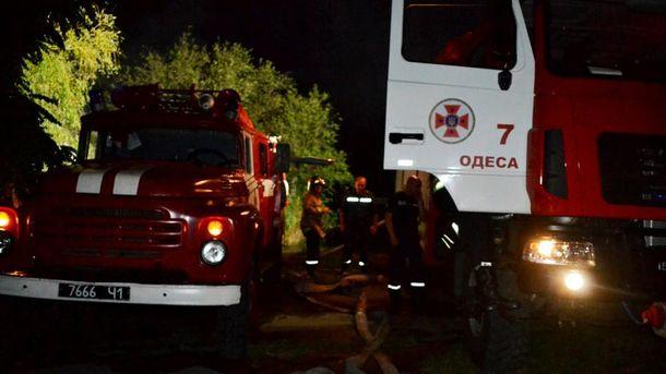 Пожарные на месте ликвидации пожара в Дюковском парке