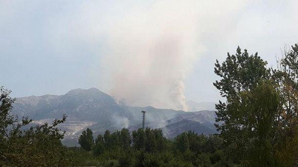 Лесные пожары в Хорватии