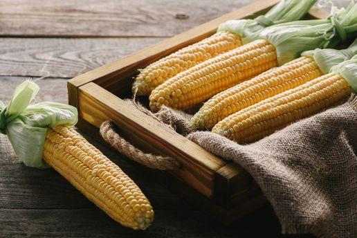 Як  варити кукурудзу правильно: корисні поради