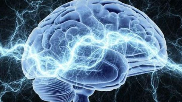 Ученые исследовали мозг во время озарения