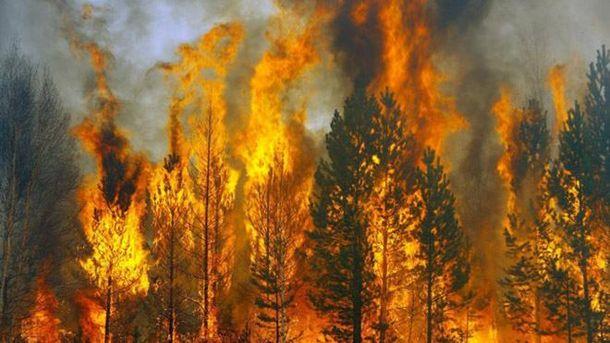 Пожарная опасность в Украине