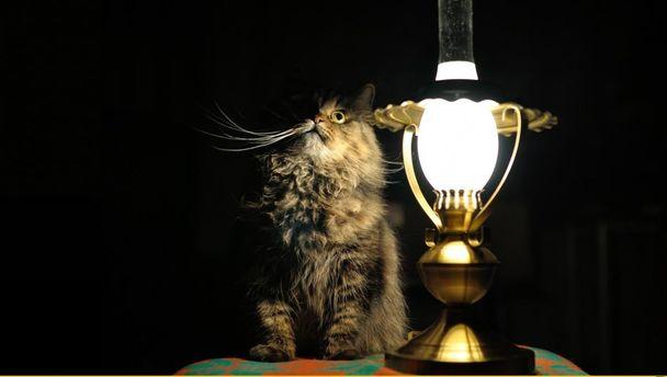 В Криму вимикатимуть світло