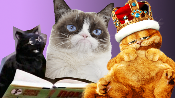 Самые известные коты из фильмов