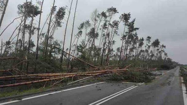 В итоге урагана вПольше погибли 6 человек