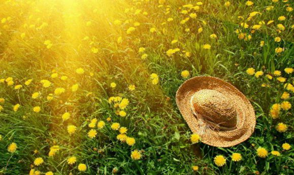 Погода на 16 серпня: в низку областей України повертається спека