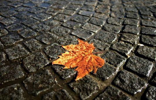 Погода на 3 вересня: захід накриють дощі, на південь повернеться спека