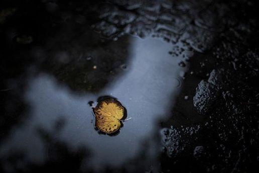Прогноз погоди на 4 вересня  в областях України