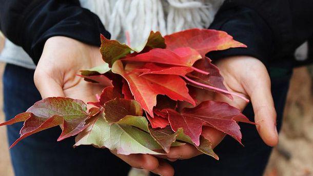 Осенняя хандра: как бороться