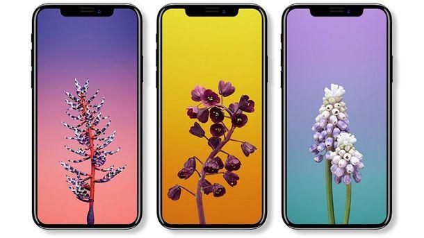 Презентація iPhone 8, iPhone 8 Plus та iPhone X: офіційні фото нових телефонів від Apple