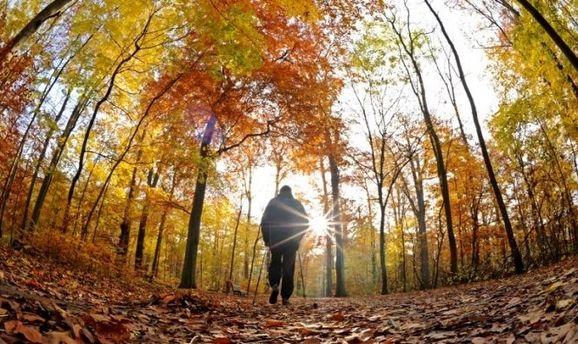 Прогноз погоды на 17 сентября: сентябрьская жара до +30 охватит Украину