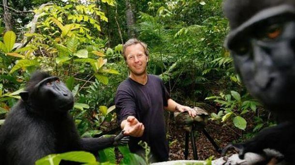 Девід Слейтер і мавпи