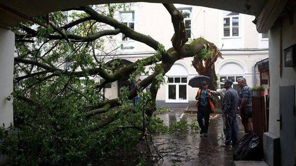 Число пострадавших из-за шторма в столицеРФ возросло до 15 человек