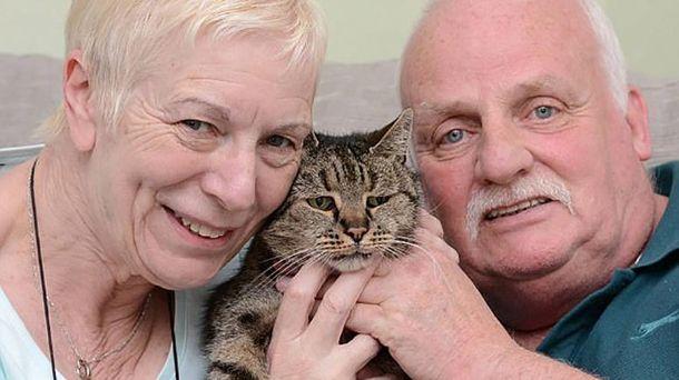 Кіт Натмег помер, йому було 32 роки