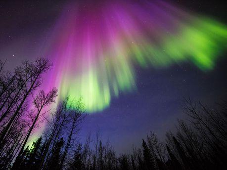 NASA показало яркое северное сияние над Канадой