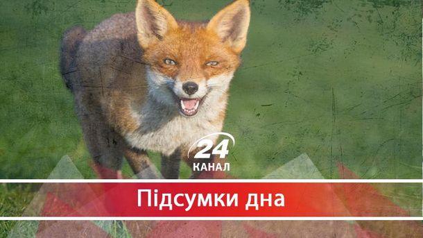 У Запорізькій обладміністрації вирішили оздоровити лисиць на 154 мільйони гривень