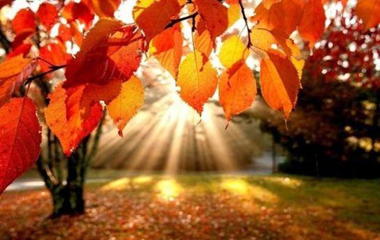 Погода на 29 вересня: сухо та сонячно