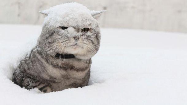 Зима недалеко: синоптики поведали, когда вДнепре ожидать первого снега