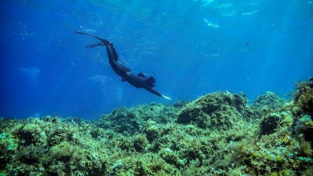Апное – підводне плавання із затримкою дихання