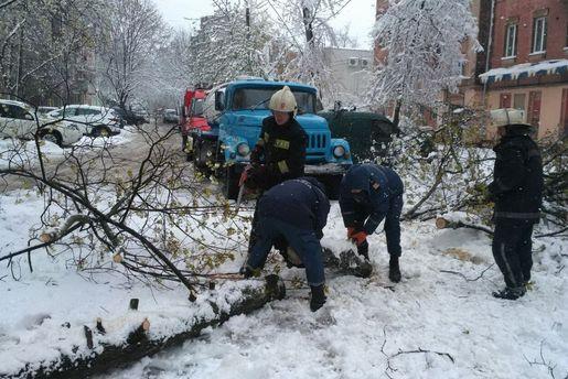 Сніг на Закарпатті