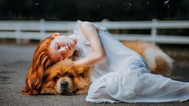 Ученые определили, кого мы любим больше – собак или людей