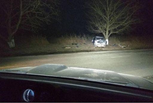 НаЗакарпатье кроссовер набольшой скорости врезался вдерево: погибли три человека