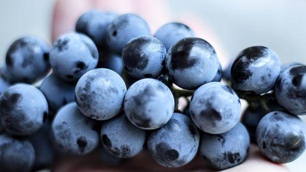 Резвератрол є червоному винограді