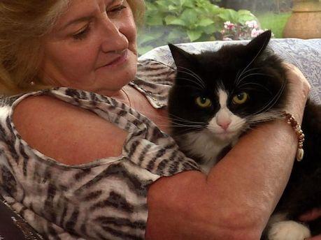 Анна и ее погибший кот Амбер