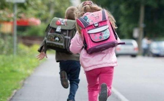 ВНиколаеве нетрезвый мужчина пытался похитить ребенка изшколы