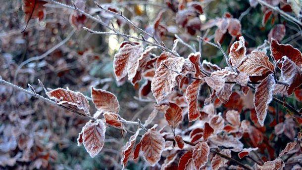 Погода на 26 листопада: в Україну йде атмосферний фронт – зі снігом та дощами
